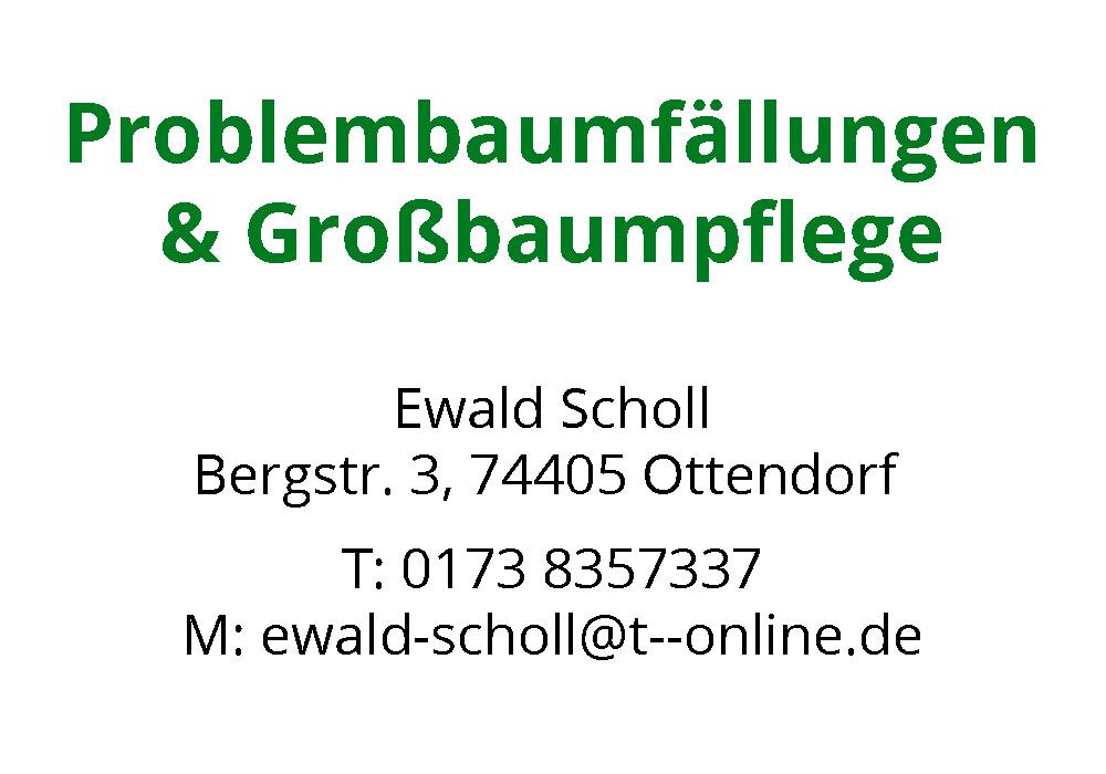 Baumpflege_Scholl